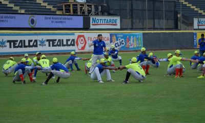 Magallanes Showcase