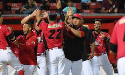 Cardenales - noticiasACN