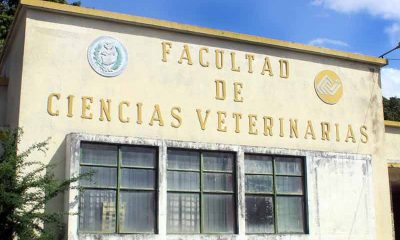 facultad de veterinaria- acn